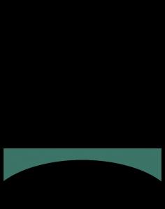 Logo LBSV